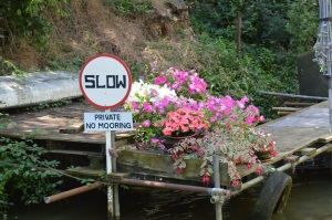 Polite and flower sign