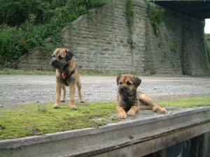 Young Fred and Archie. Sharpness Canal. AUG 2004